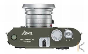 leicsafm81